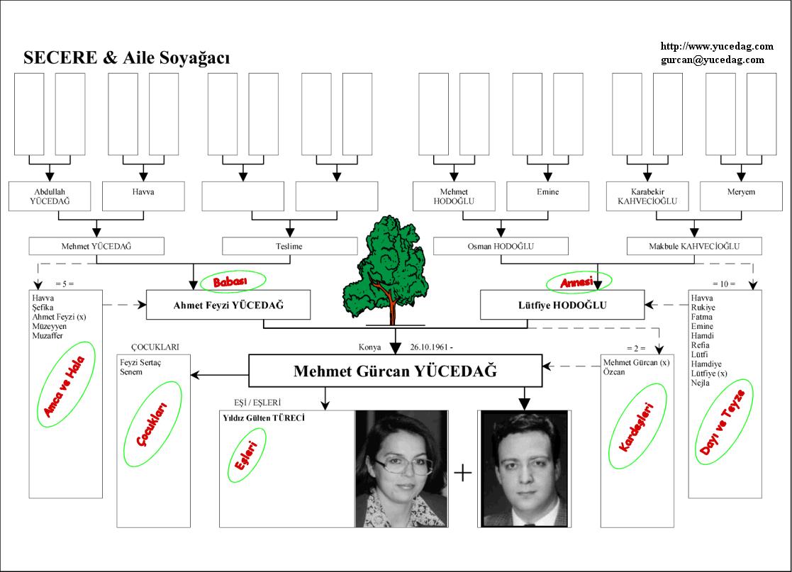 Soy Ağacı Nasıl Yapılır örnekler